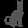 Sticker chat qui marche